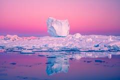 Antarktyczny lodowiec Zdjęcia Royalty Free