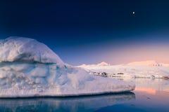 Antarktyczny lodowiec Zdjęcia Stock