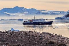 Antarktyczny statek wycieczkowy w lagunie wśród gór lodowa i Gentoo pe Zdjęcia Royalty Free