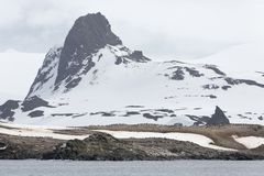Antarktyczny wybrzeże obrazy royalty free