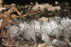 antarktyka kryształów lodu półka na zdjęcia Zdjęcie Stock