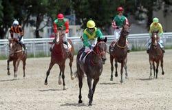 Ante carrera de caballos imagenes de archivo