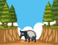 Anteater στο βουνό απεικόνιση αποθεμάτων