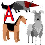 A anteater, airedale, alpaca Royalty Free Stock Image