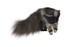 Anteater géant Photo libre de droits