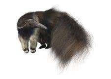 anteater rysunkowa gigantyczna ręki akwarela Fotografia Royalty Free