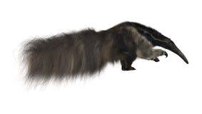 anteater rysunkowa gigantyczna ręki akwarela Zdjęcie Royalty Free