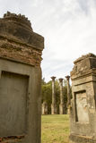 Antebellum Windsor Ruins Stock Photos