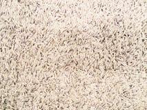 Antecedentes de la alfombra Imagen de archivo libre de regalías