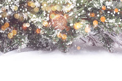 Antecedentes del árbol de navidad Fotografía de archivo