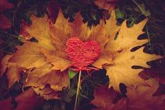 Antecedentes del corazón de la tarjeta del día de San Valentín Imagen de archivo libre de regalías