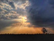 Antecedentes: luz del sol Foto de archivo