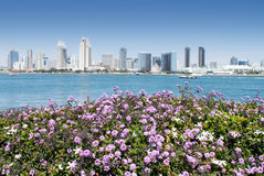 Antecedentes: San Diego Skyline Architecture Fotografía de archivo