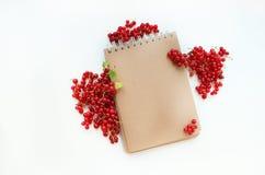 Anteckningsbok med den röda ramen royaltyfri foto