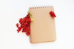 Anteckningsbok med den röda ramen arkivbild