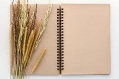 Anteckningsbok och ris för tom sida på vit bakgrund jpg Arkivfoton