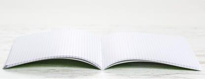 Anteckningsboken med kvadrerar Fotografering för Bildbyråer