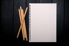 Anteckningsboken och ritar Fotografering för Bildbyråer