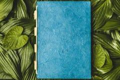 Anteckningsbokpapper med texturen, grönt blad Royaltyfri Foto