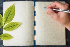 Anteckningsbokpapper med texturen, gult blad Arkivfoton