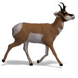 Antelope. Rendering of an antelope with Clipping Path and shadow over white royalty free illustration