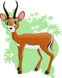 Antelope. Against from a rainforest royalty free illustration