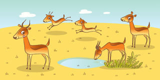 Antelope Family Royalty Free Stock Images