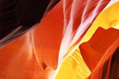 Antelope Glow Stock Photos