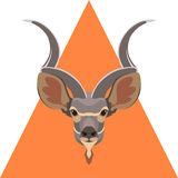 Antelope head vector illustration Stock Photo