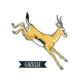Antelope image. Digital painting full color cartoon style illustration. Royalty Free Stock Image