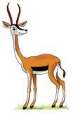 Antelope impala thompson cloven gum Stock Photo