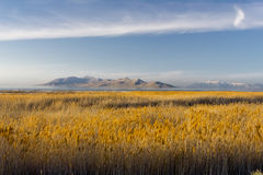 Antelope Island from Southern shore of Great Salt Lake. This photo was taken from the southern shore of the great salt lake in utah Stock Images