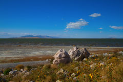 Antelope Island State Park Royalty Free Stock Photography