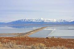 Antelope Island, Utah Royalty Free Stock Images