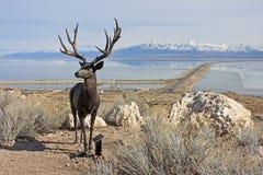 Antelope Island, Utah. Statue on Antelope Island, Utah Royalty Free Stock Photography