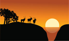 Antelope silhouette on the cliff Royalty Free Stock Images