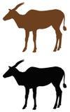 Antelope silhouette Royalty Free Stock Image
