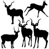 Antelope Silhouettes. Black Illustration, Vector Royalty Free Stock Photo