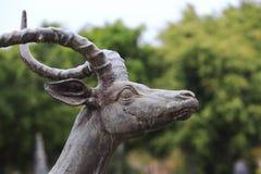 Antelope statue Stock Photos