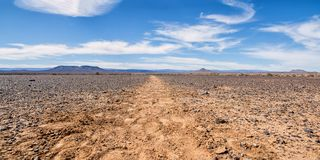 Antelope Track. An Antelope track leads through the open savanna in Southern Africa royalty free stock photography