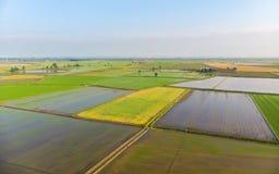 Antena: almofadas de arroz, campo italiano rural cultivado inundado da terra dos campos, ocupação da agricultura, sprintime em Pi imagem de stock royalty free