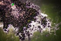 Antena Belmar plaży Jetty Nowy - bydło obraz stock