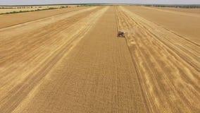 ANTENA: Ceifeira de liga em campos agrícolas no tempo de colheita vídeos de arquivo