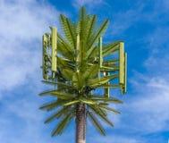Antena da pilha da palmeira Fotografia de Stock
