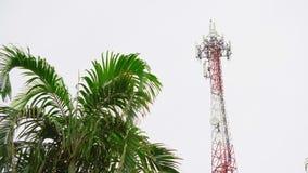 Antena da telecomunicação de uma comunicação celular da transmissão do Internet e de televisão ilha tropical, Ásia video estoque