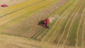 Antena de la máquina segadora roja que trabaja en campo de trigo grande metrajes
