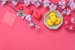 Antena de la opinión de sobremesa de accesorios y del Año Nuevo chino del Año Nuevo y lunar Imagen de archivo