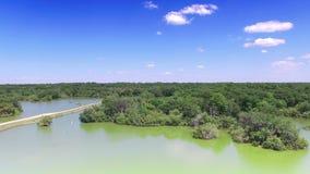 Antena de la reserva natural en la Florida central almacen de metraje de vídeo