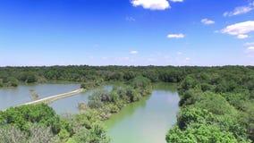Antena de la reserva natural en la Florida central metrajes