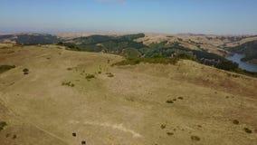 Antena de pastagem abertas em Califórnia do norte video estoque